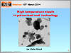 High temperature steels in pulverised coal technology