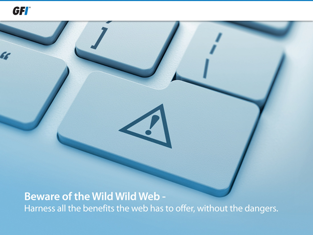 Beware of the Wild Wild Web