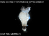 Data Science from Hadoop to Visualization