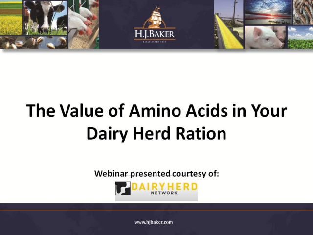 The Value of Amino Acids in your Dairy Herd Ration