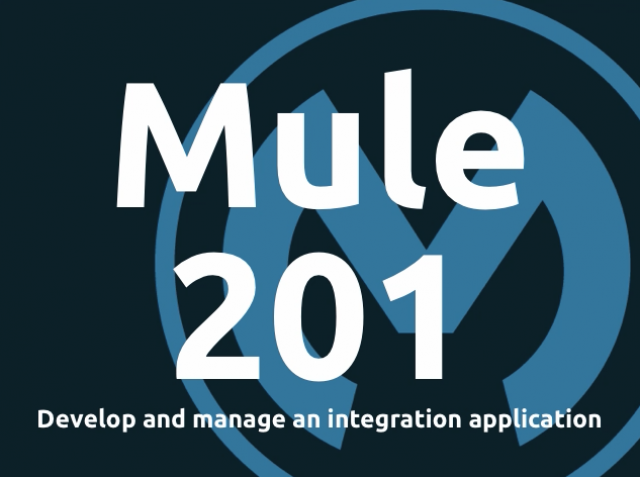 Mule 201: Develop and manage a hybrid integration application