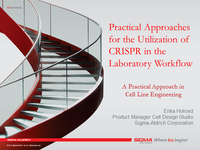 Practical Utilization of CRISPR in the Laboratory Workflow - Session 1