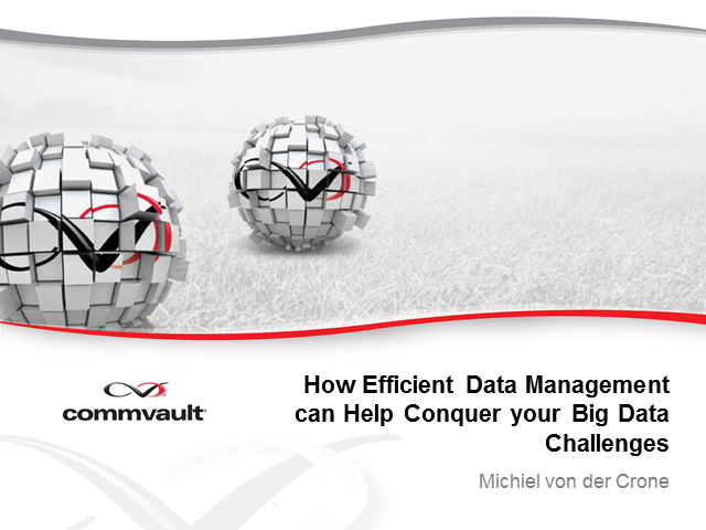 How Efficient Data Management Can Help You Conquer your Big Data Challenges