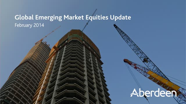 Global Emerging Markets Update: February 2014