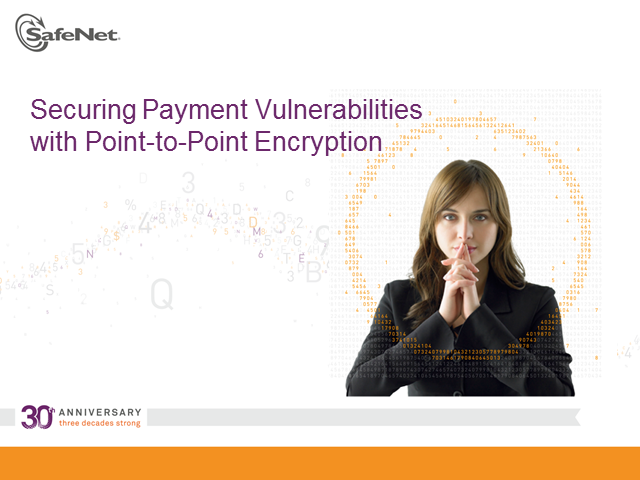 Secure payment vulnerabilities with Point-to-Point encryption