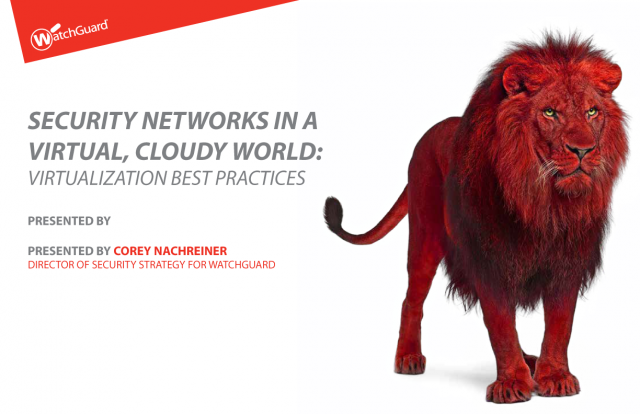Security Network in a Virtual, Cloudy World: Virtualization Best Practices