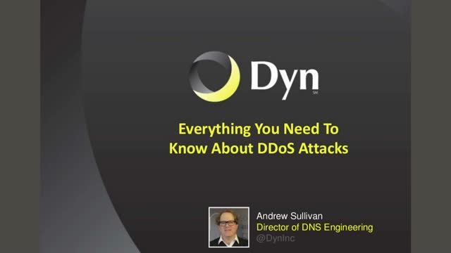 Managed DNS: Everything You Need To Know About DDoS Attacks