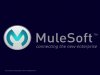 Connect Faster with Mule 3.5