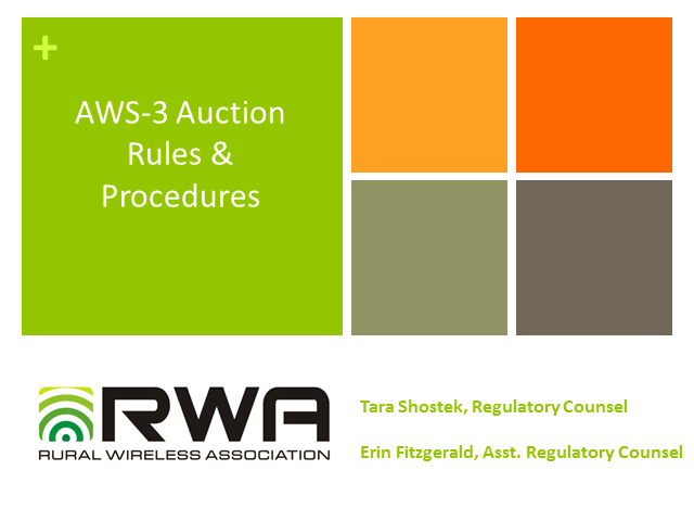 AWS-3 Auction Rules & Procedures