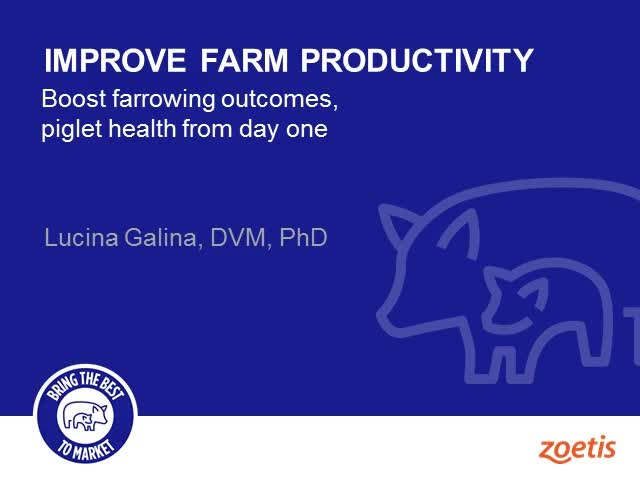 Improve farm productivity - Boost farrowing outcomes, piglet health from day one
