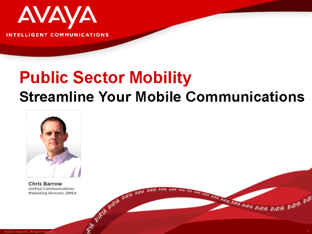 Mobility in the Public Sector
