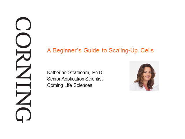 A Beginner's Guide to Scaling-Up Cells