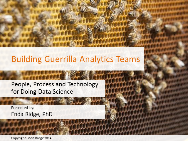 Building Guerrilla Analytics Teams