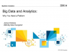 Big Data and Analytics: Why You Need a Platform