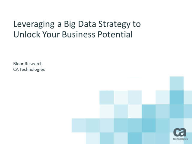 Leveraging a Big Data Strategy to Unlock Your Business Potential