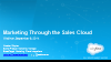 Marketing through the Sales Cloud