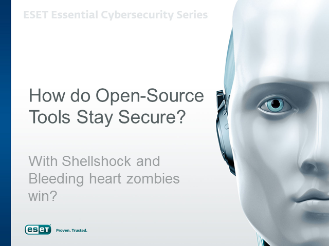 How do Open Source Tools Stay Secure?