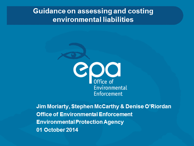 Guidance on assessing and costing environmental liabilities