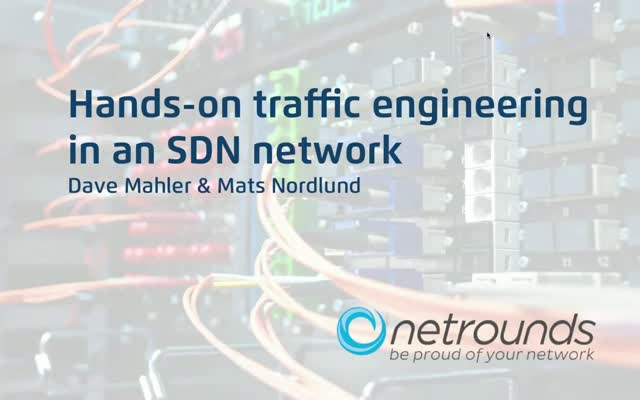 SDN Traffic Engineering
