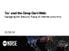 TOR & the Deep Dark Web: Managing the Risks of Internet Anonymity