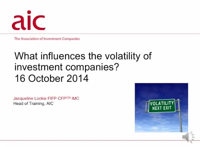 What influences the volatility of investment companies?