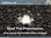 Steal This Presentation - The Problem of Data Leakage
