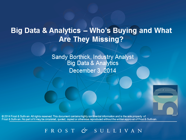 Big Data & Analytics: Who's Buying What, and What are They Missing?