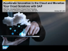 Channel Cloud Consulting with SAP: Cloud Economics & Hybrid Cloud Strategies