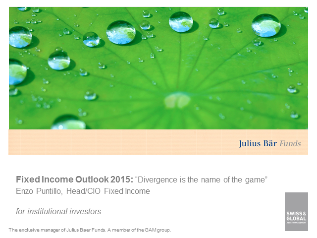 Global fixed income outlook - The year of divergence / English
