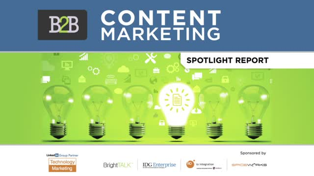 2014 B2B Content Marketing Spotlight Report Highlights