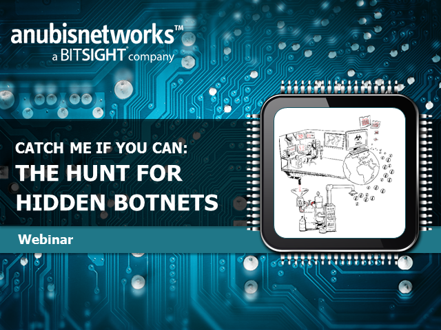 Catch me if you can: The Hunt for Hidden Botnets