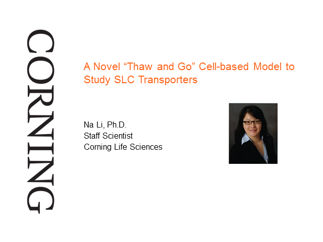 "A Novel ""Thaw and Go"" Cell-based Model to Study SLC Transporters"