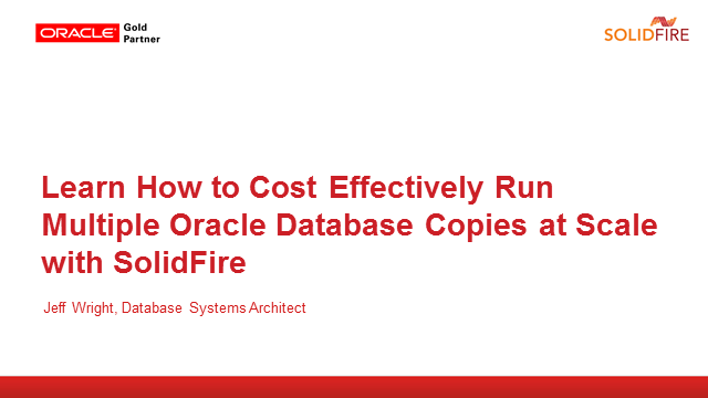 Cost Effectively Run Multiple Oracle Database Copies at Scale