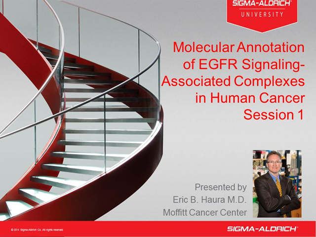 Molecular Annotation of EGFR Signaling-Associated Complexes in Human Cancer 01