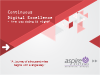 Continuous Digital Excellence - Are you doing it right?