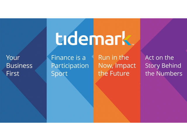 Tidemark: New Breed of Enterprise Performance Management Software