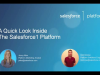 A Quick Look Inside the Salesforce1 Platform