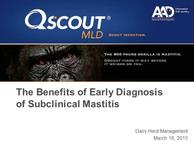 How Producers can Benefit from Early Diagnosis of Subclinical Mastitis
