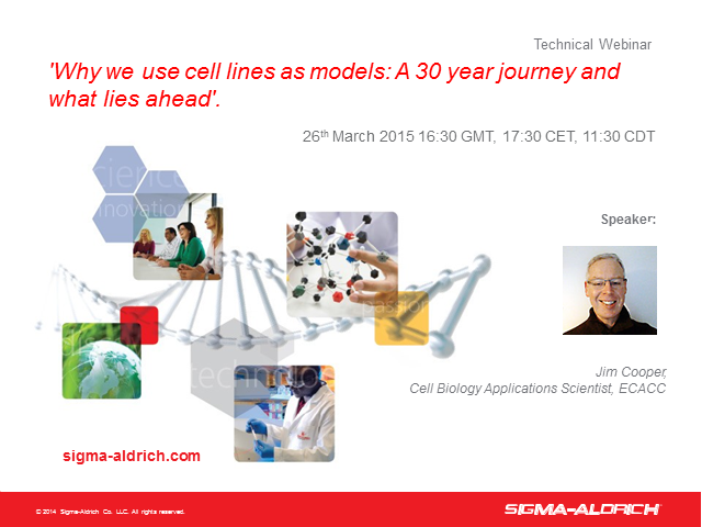 Why We Use Cell Lines as Models: A 30 Year Journey and What Lies Ahead