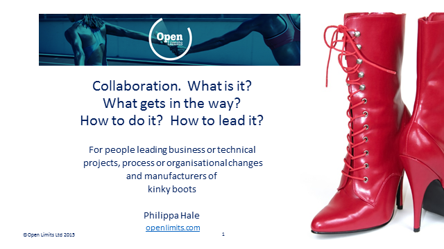 Collaboration. What is it? What gets in the way? How to do it? How to lead it?