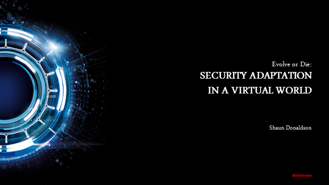 Evolve or Die: Security Adaptation in a Virtual World