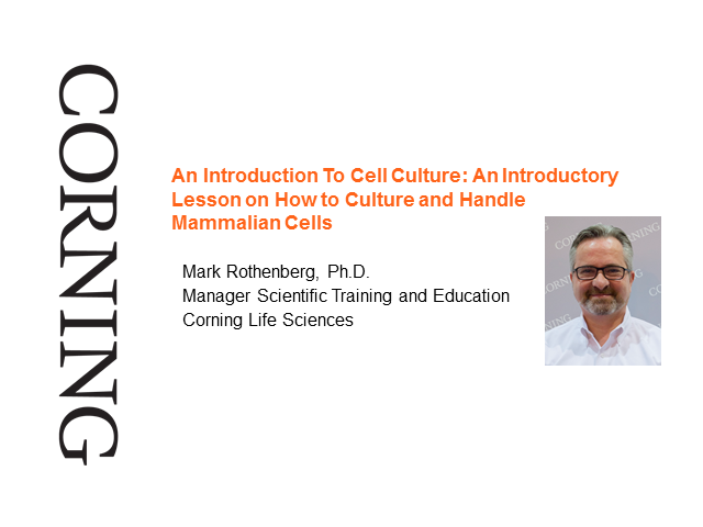 An Introduction To Cell Culture