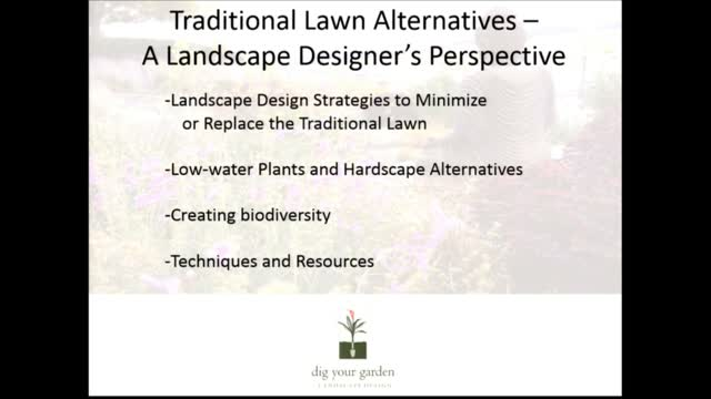 The 21st Century Landscape is Here: Water Wise Landscape Alternatives