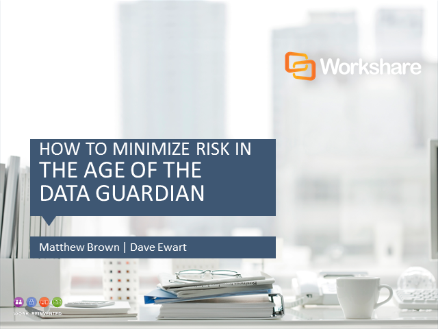 "How to minimize risk in ""The Age of the Data Guardian"""