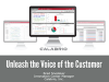 Unleash the Voice of the Customer