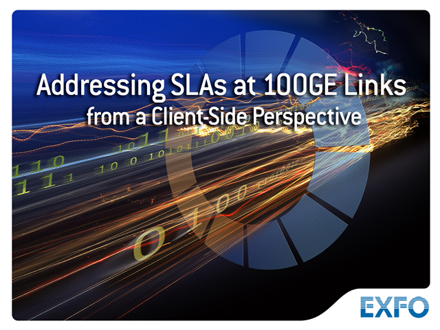 Addressing SLAs at 100GE Links—from a Client Perspective