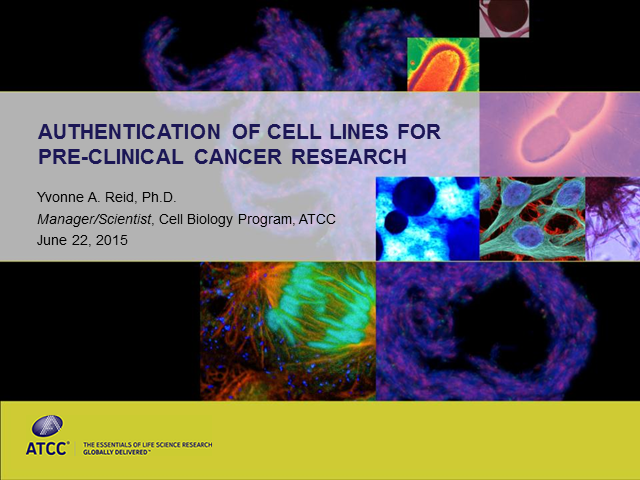 Authentication of Cell Lines for Pre-Clinical Cancer Research
