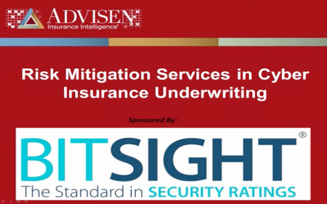 Risk Mitigation Services in Cyber Insurance Underwriting