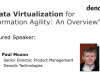 Data Virtualization for Information Agility:  An Overview
