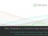Why Visualization is Critical for Data Wrangling